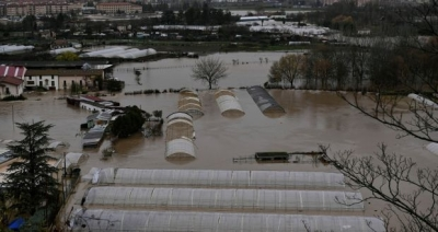 UK companies use EU ETS to hedge carbon amid post-Brexit uncertainty